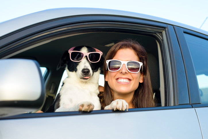 Summer Driving and Car Care Tips